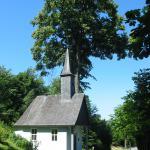 Assinghausen_06.08-13_05